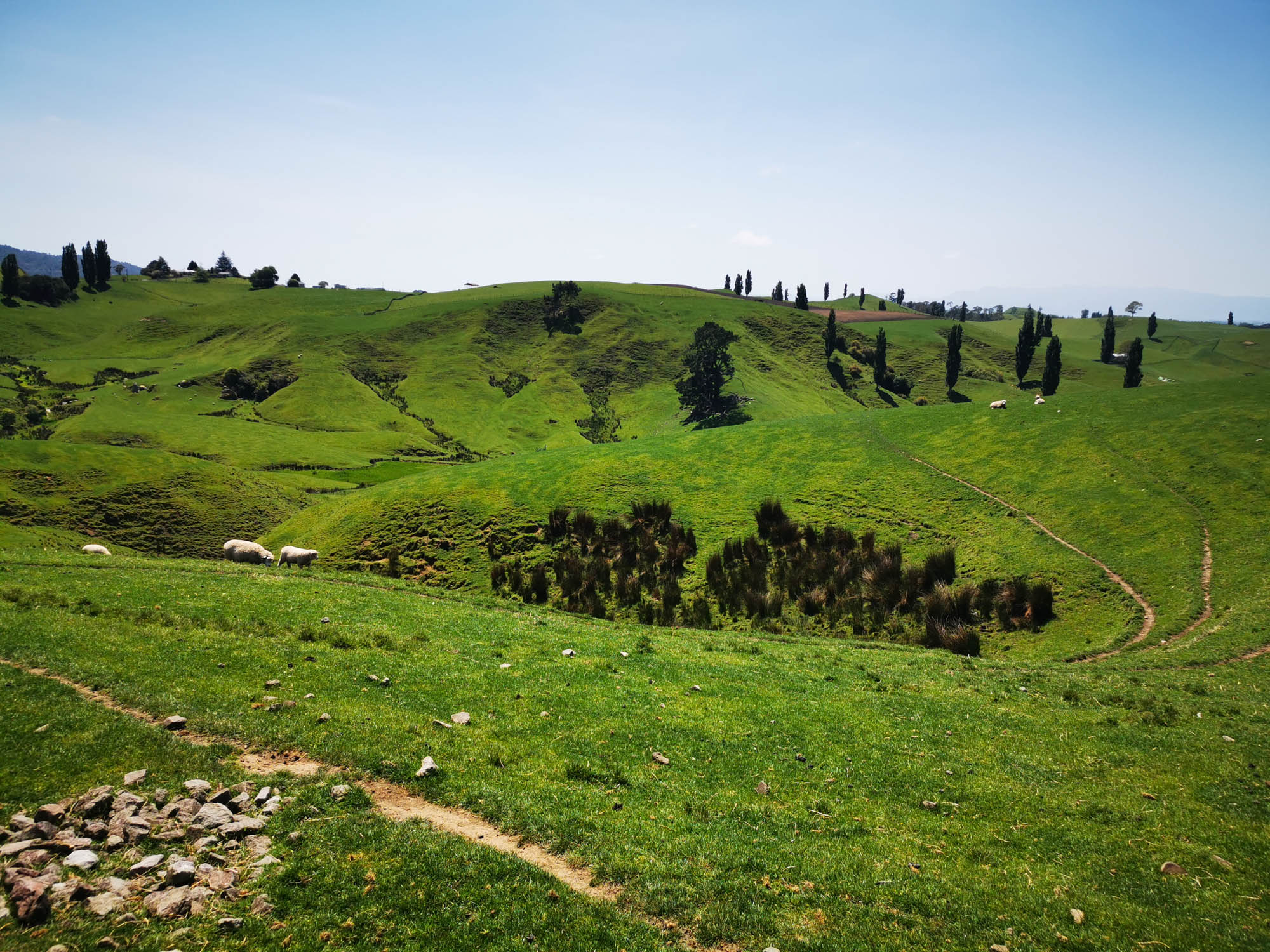 Hobbiton – Rolling green hills